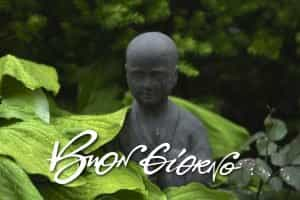Buona giornata da Buddha