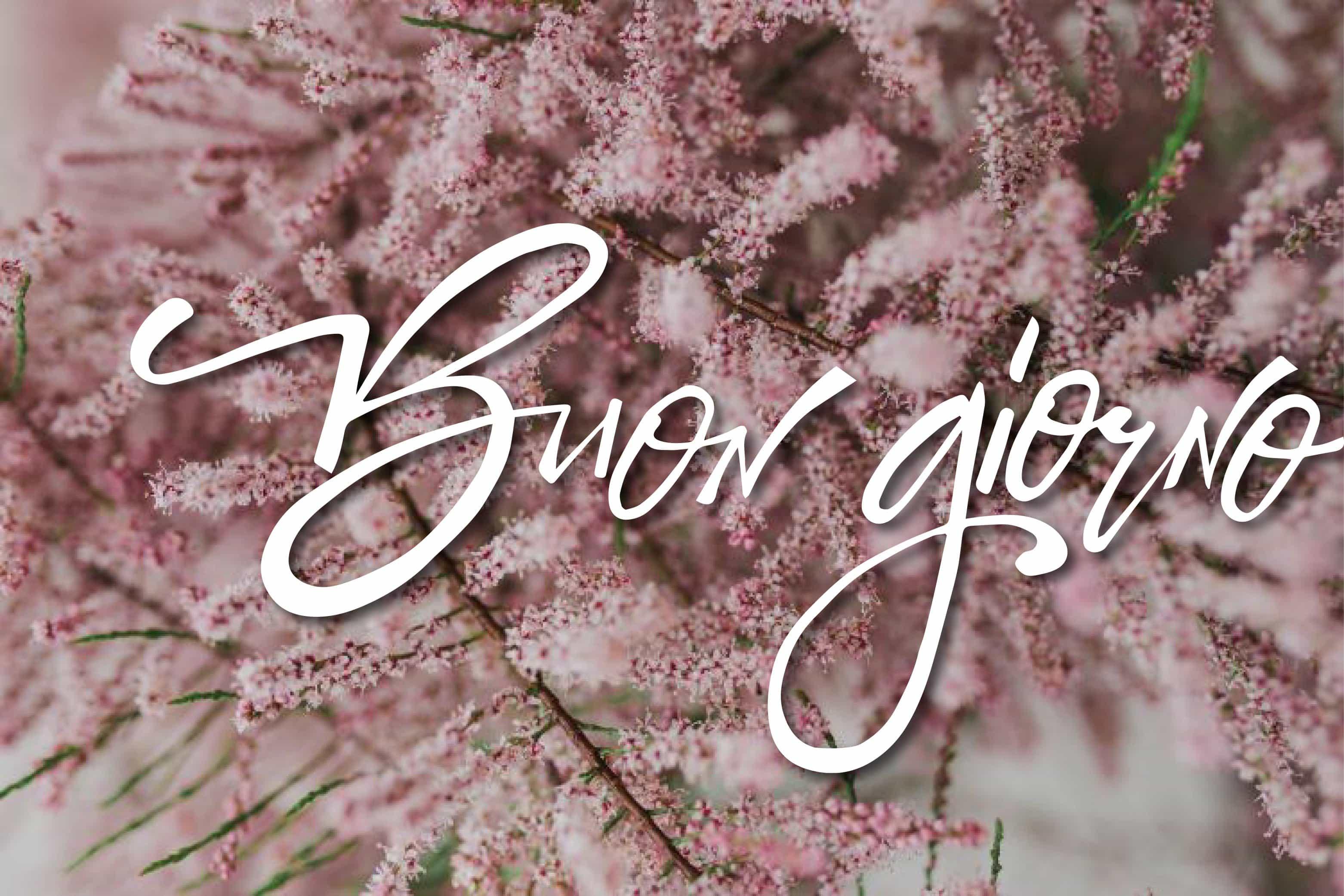 Buon giorno con fiori ai tuoi amici