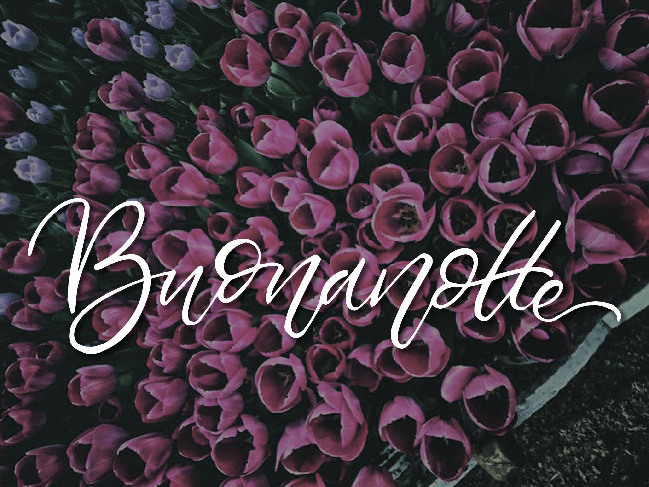 Immagine della buonanotte con i tulipani scaricate ora