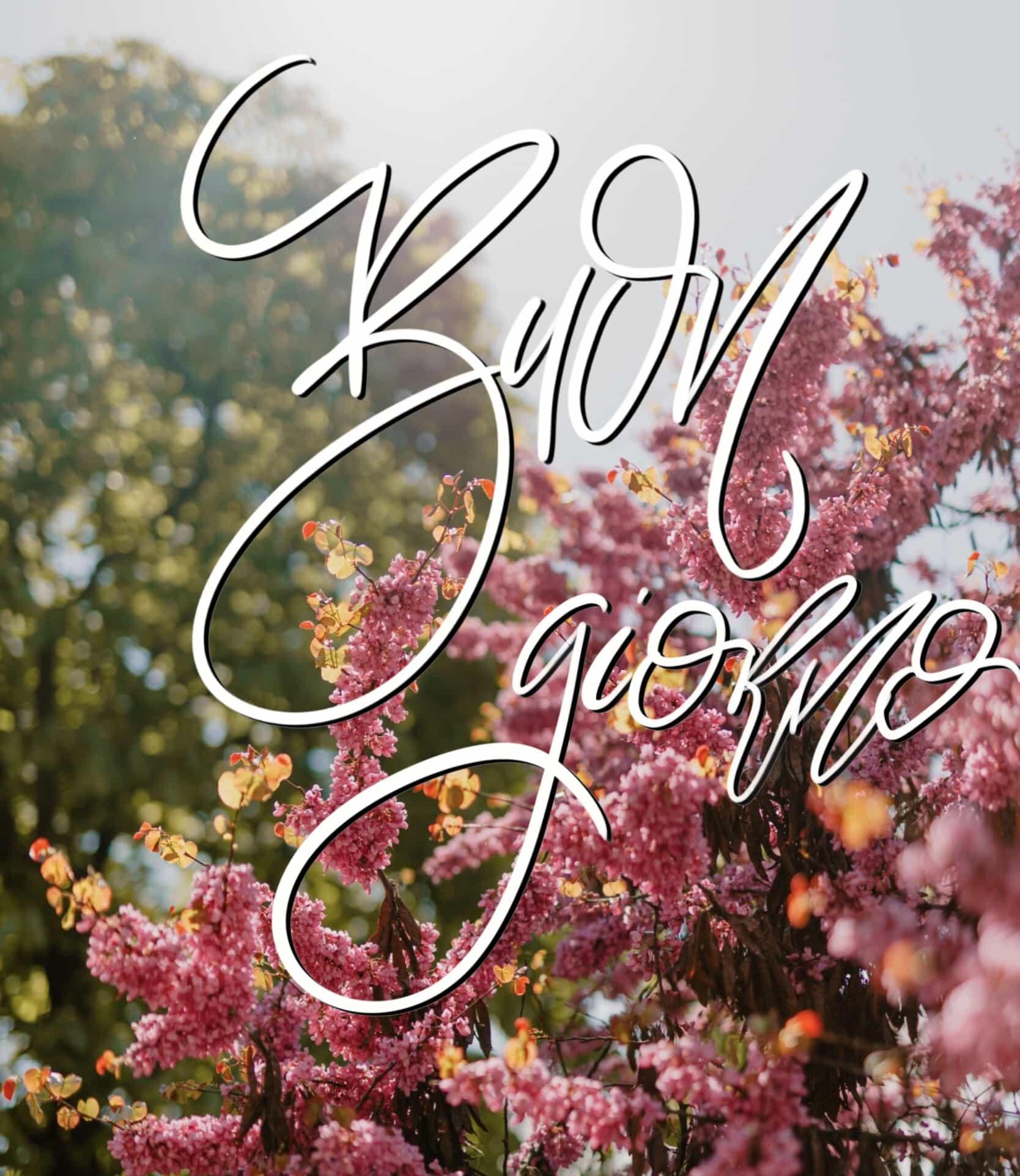 Buongiorno_fiori_sole