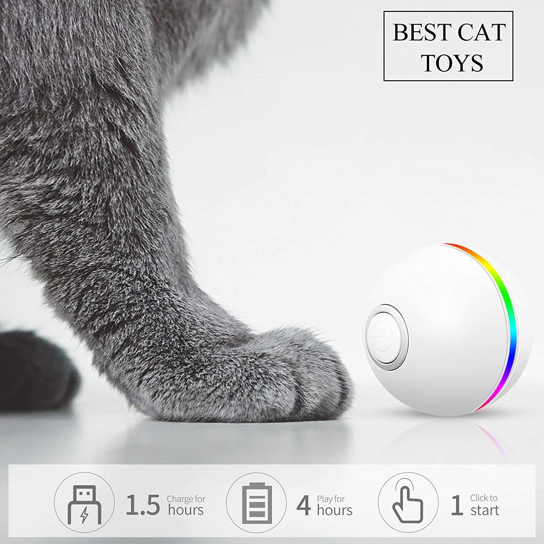 Giochi interattivi per gatti